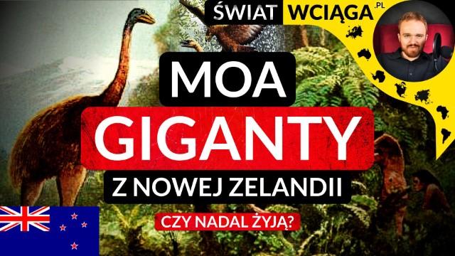 Moa. Olbrzymie ptaki z Nowej Zelandii